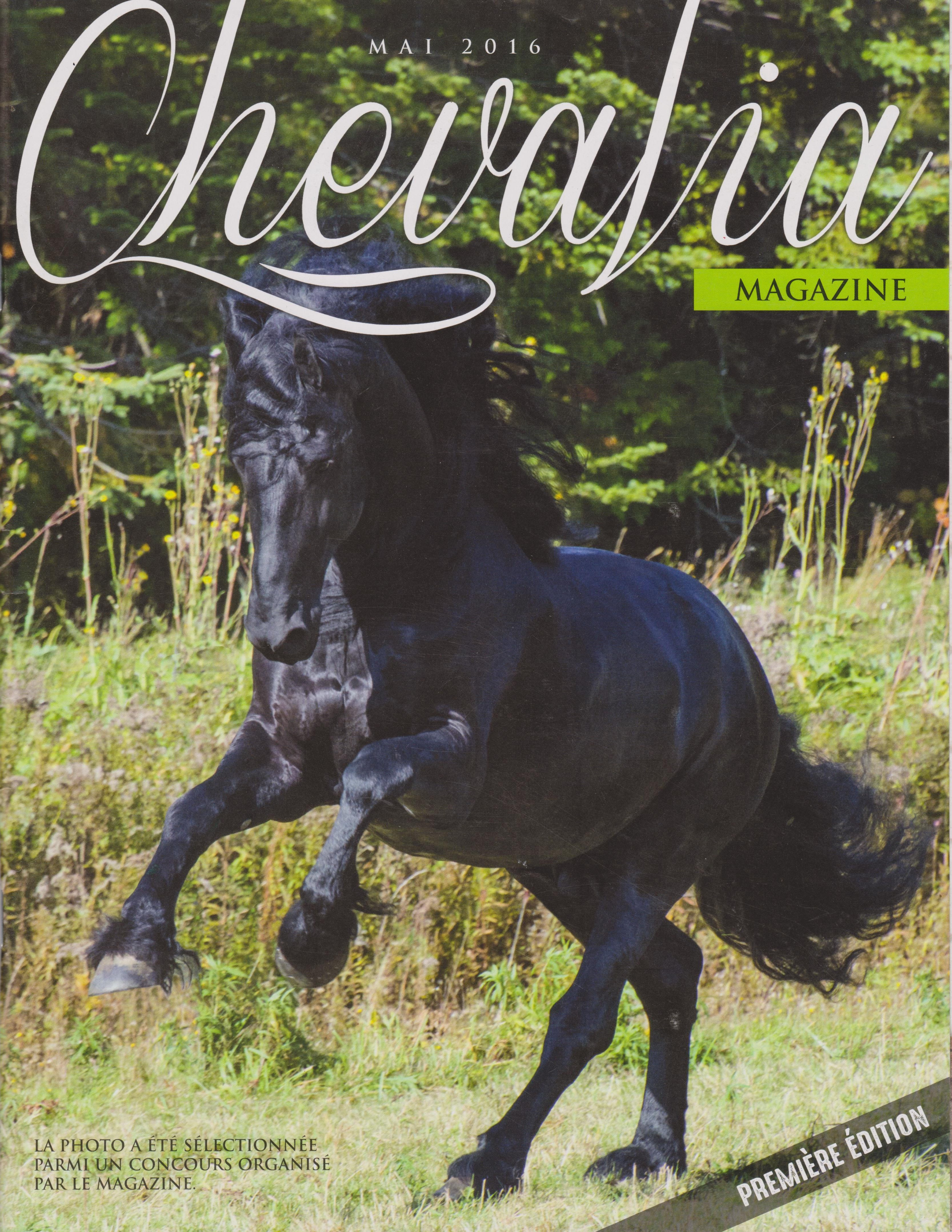 star horse appearing in the medias chevalia cover magazine